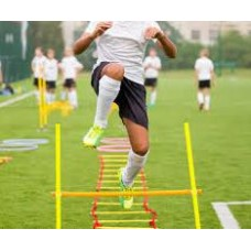 Sports Conditioning Specialist Certification